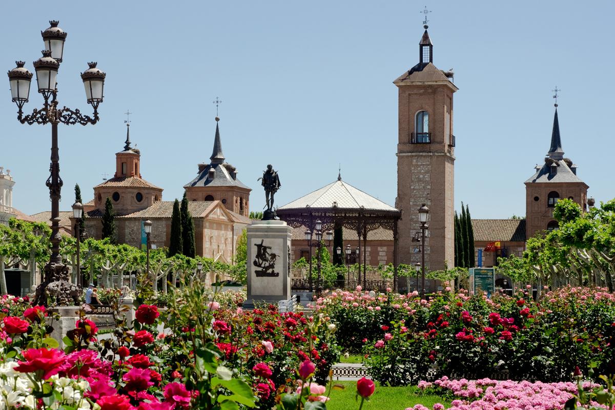 TOUR CERVANTES ALCALA DE HENARES